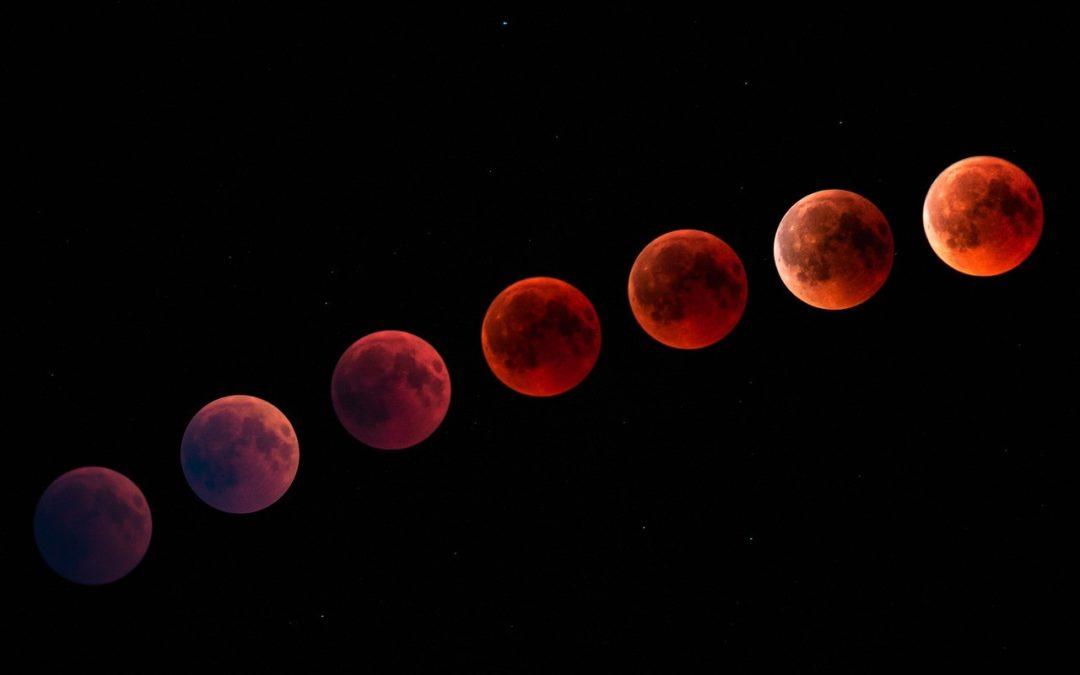 Cycle menstruel : comment comprendre les variations de couleur des règles ?